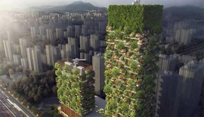 Çin'de havayı temizleyen dikey ormanlar inşa edilecek!