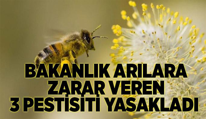 Bakanlık arılara zarar veren 3 pestisiti yasakladı