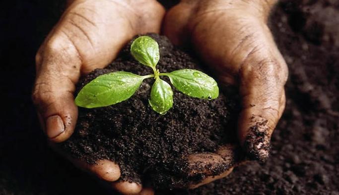 'Herkes İçin Ekolojik Okuryazarlık Seminerleri' başlıyor