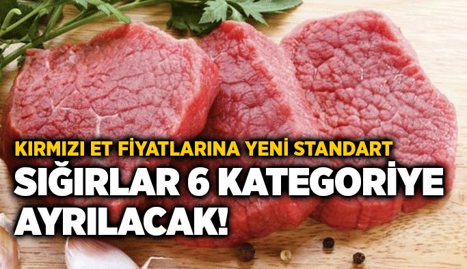 Kırmızı et fiyatlarına yeni standart: Sığırlar 6 kategoriye ayrılacak!