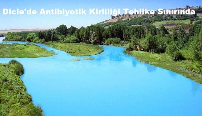 Dicle'nin de aralarında olduğu yüzlerce nehirde antibiyotik kirliliği