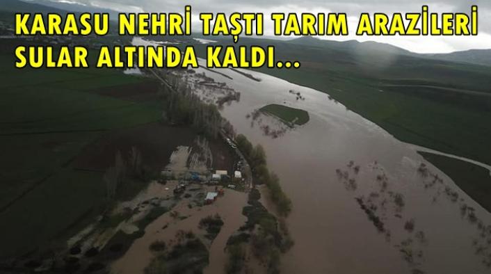 Karasu Nehri taştı, tarım arazileri sular altında kaldı