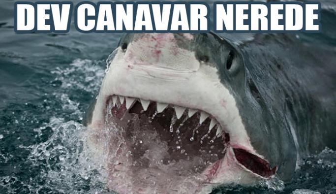 Okyanusun derinliklerindeki dev canavar  nerede?
