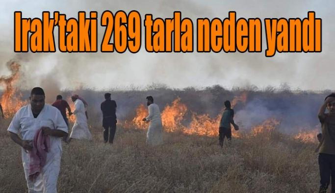 Irak'taki 269 tarla neden yandı ?