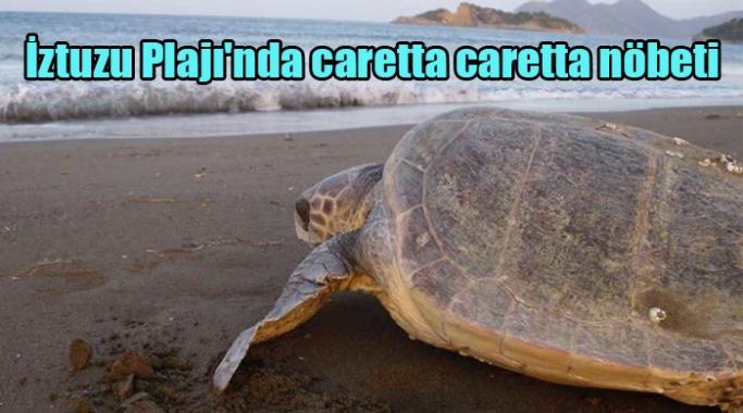İztuzu Plajı'nda caretta caretta nöbeti