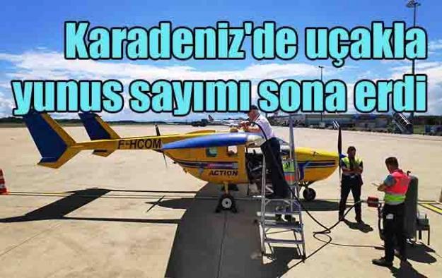 Karadeniz'de uçakla yunus sayımı sona erdi