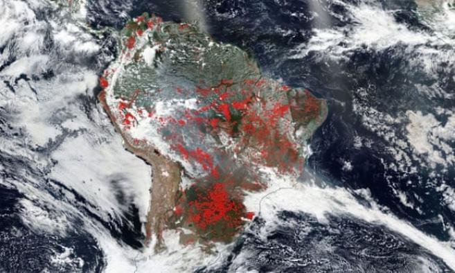 Amazon yangınları neleri tehdit ediyor ?