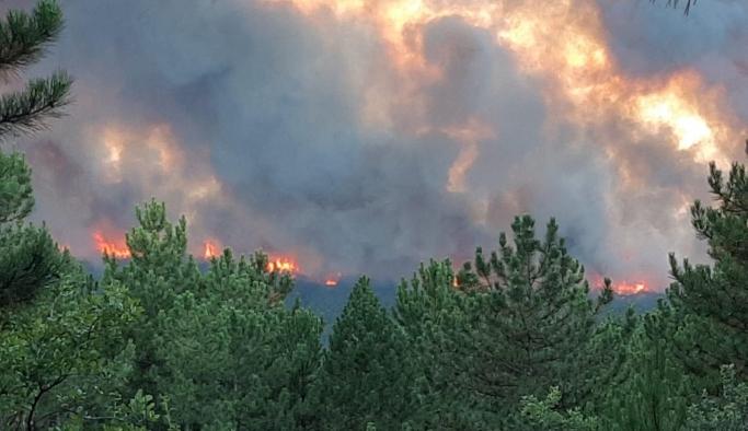 Bir orman yangın daha! Hızla büyüyor