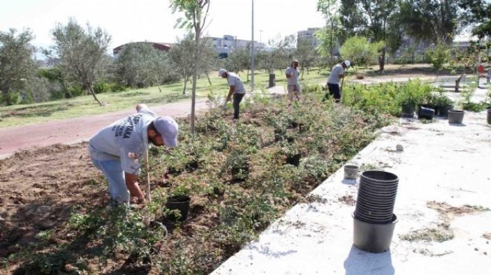 Daha yeşil bir Karşıyaka için çalışmalar devam ediyor