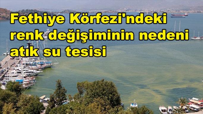 """""""Fethiye Körfezi'ndeki renk değişiminin nedeni atık su tesisi"""""""