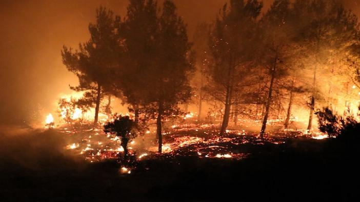 Gelibolu'daki yangında mühimmat patlamaları yaşanıyor