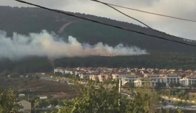 Pendik'de çıkan orman yangınıyla ilgili flaş gelişme