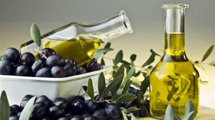Zeytin ve zeytinyağı ihracatçıları destek istiyor
