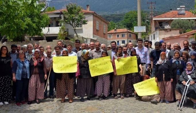 Bergama'da 'altın madeni' tartışması