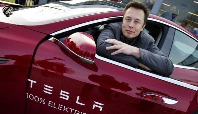 Tesla kuracağı fabrika için 92 hektarlık ormanı yok edecek!