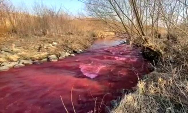 Kanada'da nehir kırmızıya büründü