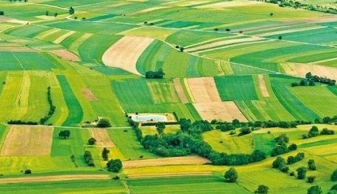 Bakan Kurum'dan Hazine arazileri açıklaması