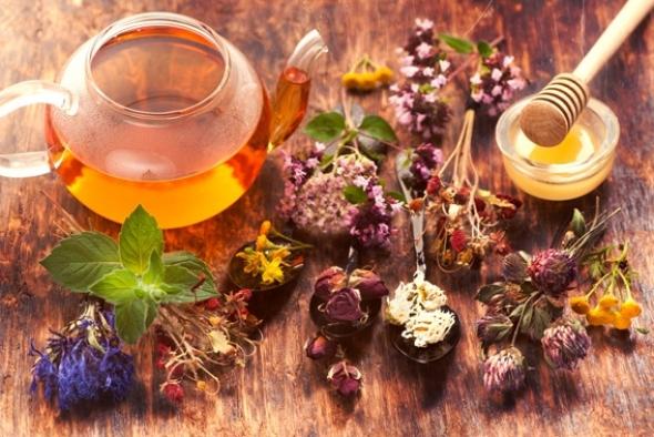 143 dönümlük hazine arazisinde tıbbi ve aromatik bitkiler üretilecek
