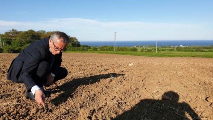 """Sinop'ta """"Milli Tarım Yerli Tohum Projesi"""" başlatıldı"""