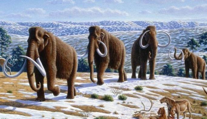 Buzul Çağı'ndaki insan göçü teorisini doğru mu?