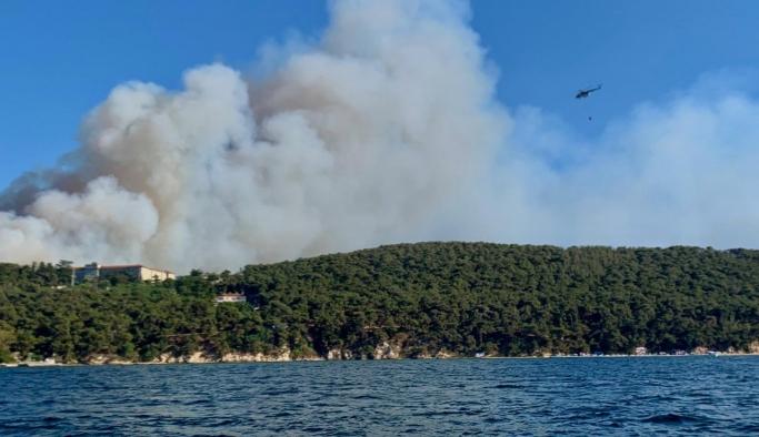 Heybeliada'da orman yangını: Çok sayıda itfaiye ekibi müdahale ediyor