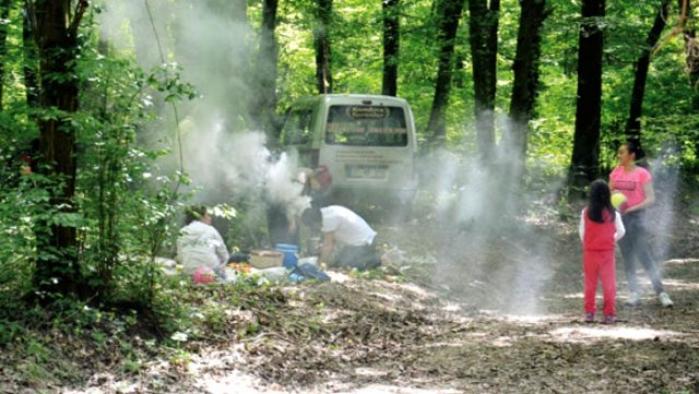 Artan yangınlar sonrası ormanda mangal kullanımına ilişkin yeni düzenleme geliyor