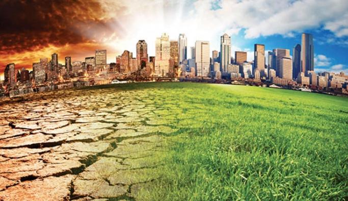 """Annei Lowrey: """"İklim değişikliği Amerikalıları öldürüyor"""""""