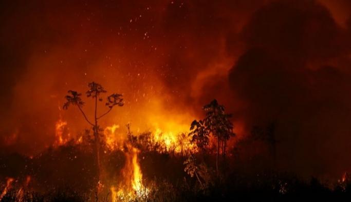 Brezilya'da tropikal sulak alanları kasıp kavuran yangınlar