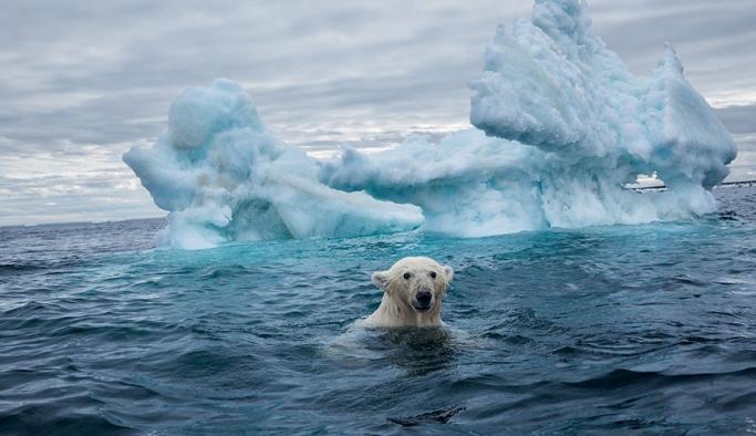 Pandemi süreci iklim değişikliğini durduramadı