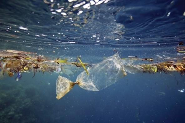 Akdeniz'deki plastik atıklarda en büyük pay Türkiye'nin