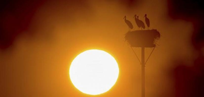 Eylül ayında 93 merkezde ekstrem sıcaklık rekoru kırıldı