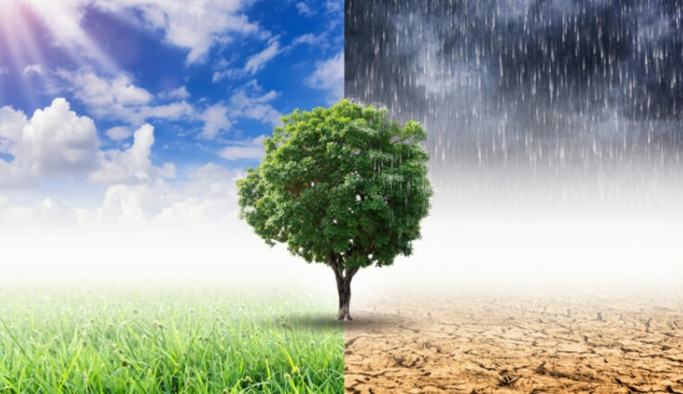 'İklim biziz, değişeceğiz' kampanyası başladı