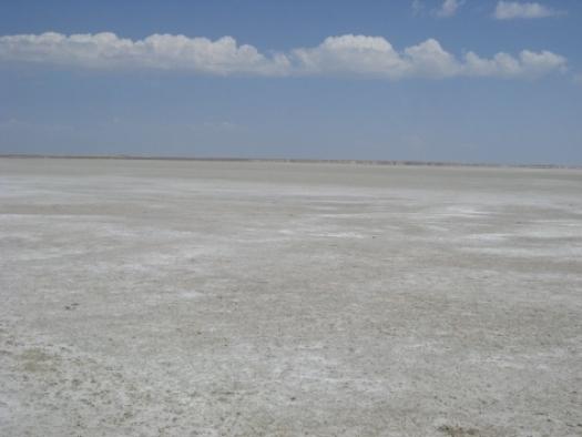 Seyfe Gölü Kuş Cenneti, kuraklığın etkisiyle sessizliğe büründü