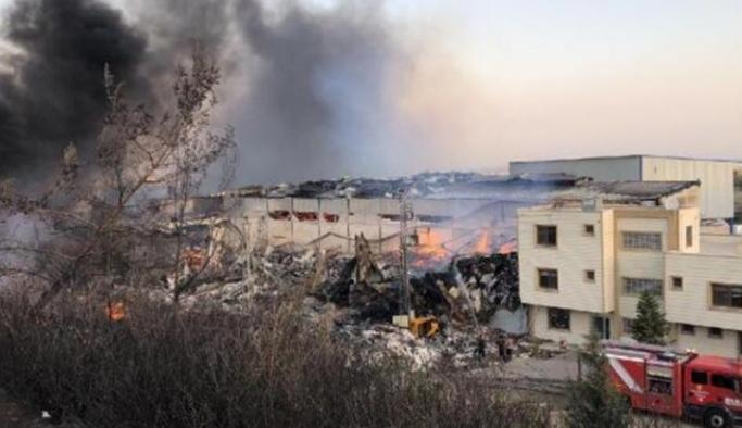 TOD: Yeni düzenlenen ormancılık mevzuatının da yangınlarda etkisi var
