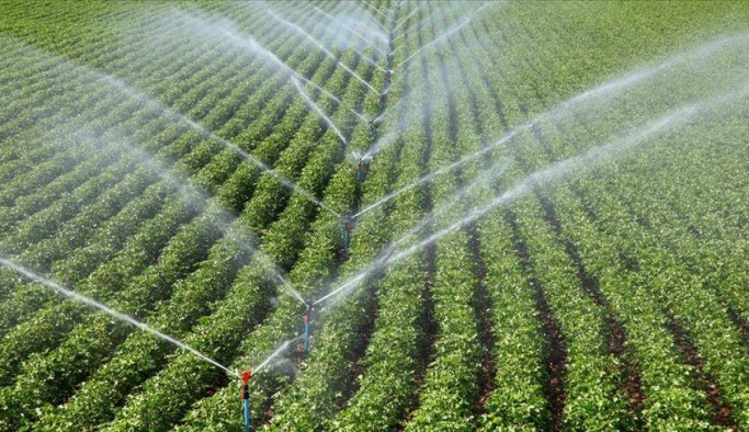 """Çiftçiler """"Model Üretim Projesi"""" ile daha yüksek verim elde ediyor"""