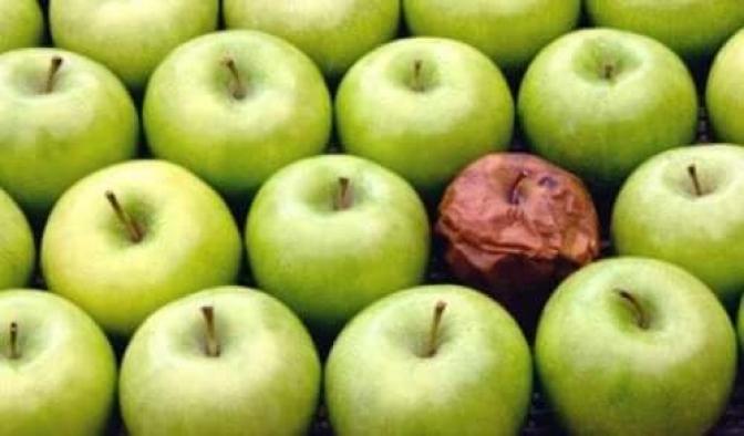 'Çürük elmadan meyve suyu' iddiasına Bakanlıktan flaş açıklama