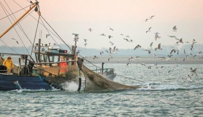 Tsunami endişesinden İzmir'de balıkçılar, denize açılmıyor