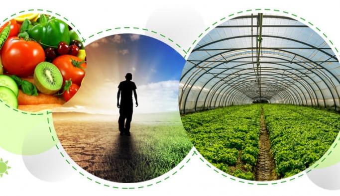 İklim değişikliği yetersiz beslenmeye neden oluyor