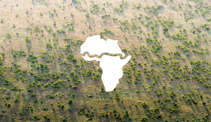 Büyük Yeşil Duvar Girişimi'ne 14 milyar dolarlık destek