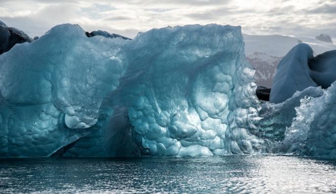 Buzul bilimcileri görünce buzları kırmayı bıraktı!
