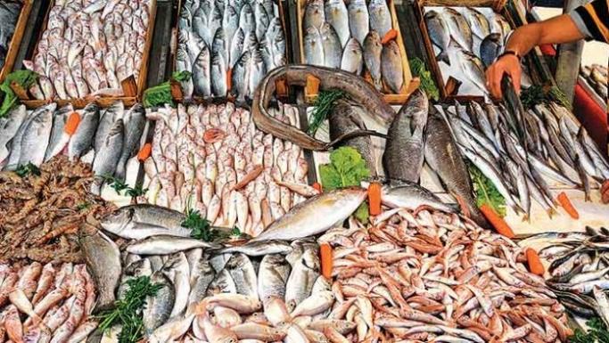 Deniz suyu sıcaklığı balıkların hem boy hem de göç yollarını olumsuz etkiliyor!