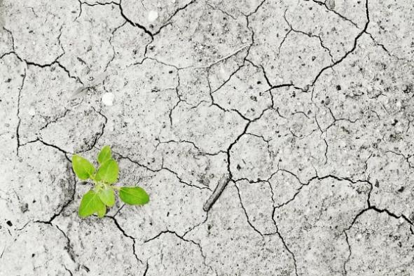 İklim değişikliğiyle mücadelede bireysel önlem alanların sayısı yüzde 68.2.