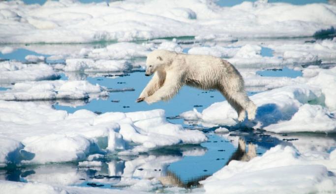 Küresel deniz yüzey sıcaklığı 120 yılda 1,1 derece arttı