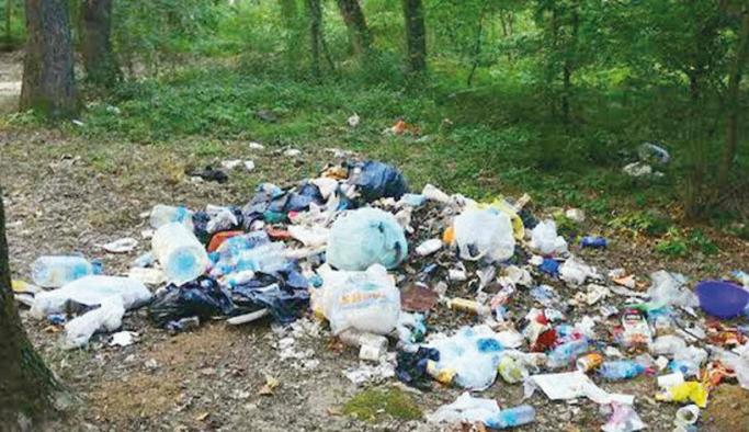 Belgrad Ormanı'nda utandıran manzara