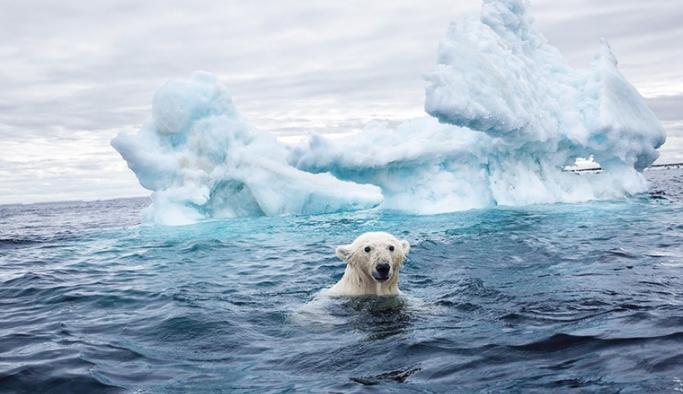 Buzulların erimesi durumunda birçok ülkenin yok olacağı tahmin ediliyor