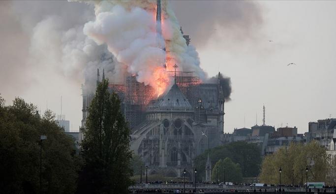 Katedral için 200 yıllık ağaçları kestiler!