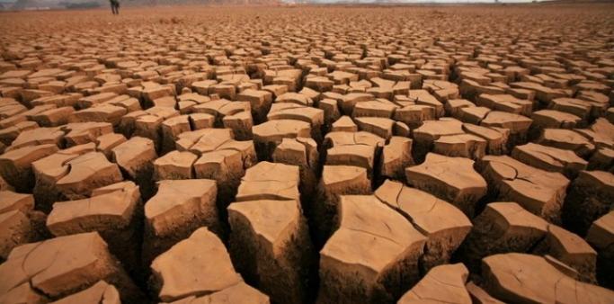 Uluslararası Enerji Ajansı'nın iklim kriziyle ilgili raporu çıktı