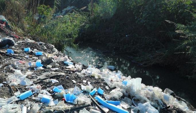 Greenpeace: Türkiye plastik çöplüğü olmasın