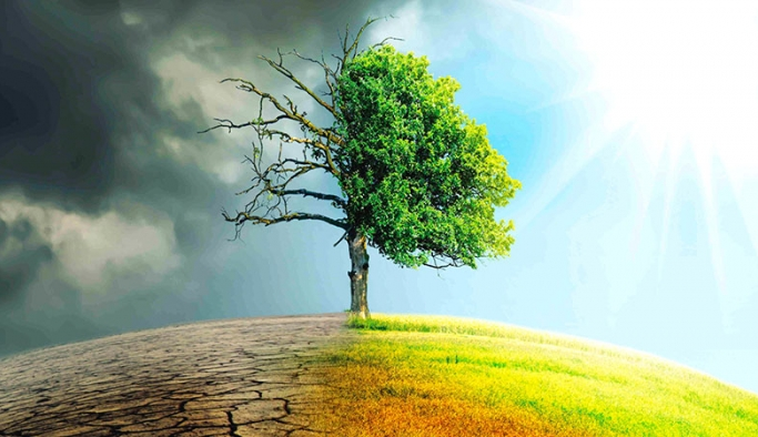 """""""İklim Değişikliği ile Mücadele ve Enerji Sektörünün Dönüşümü"""" webinarı gerçekleştirilecek"""
