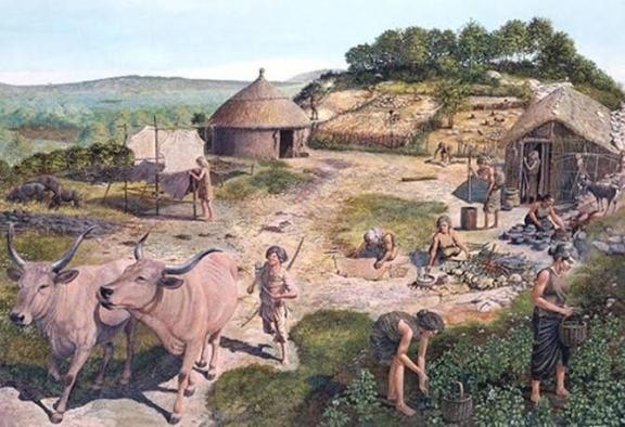 İstanbul'da 9 bin yıllık tarım aletleri bulundu
